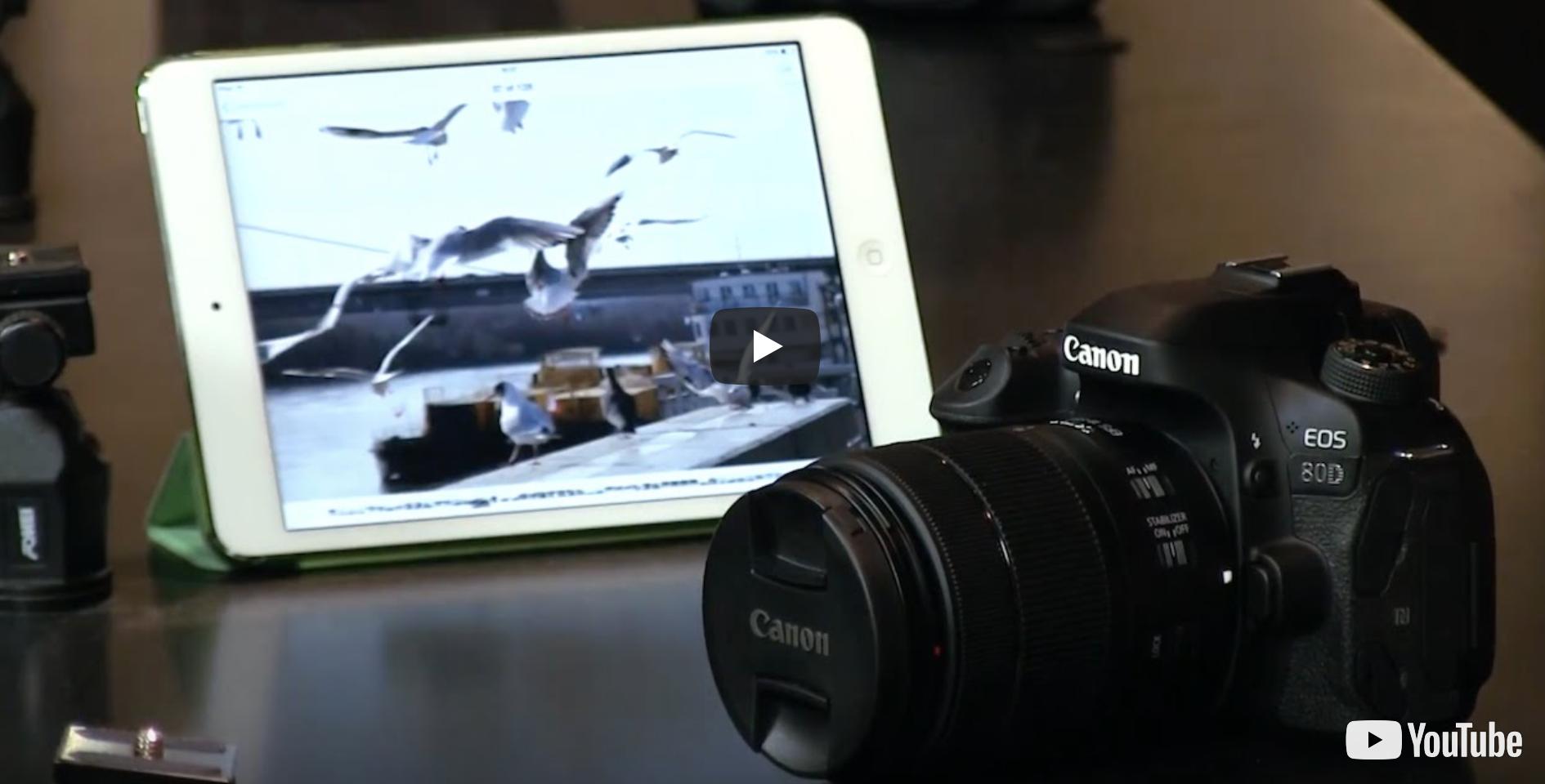 Digitálna zrkadlovka Canon EOS 80D Telo  f849dc1d832